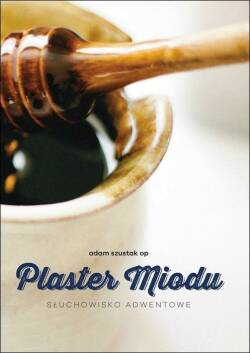 Plaster miodu. Audiobook CD